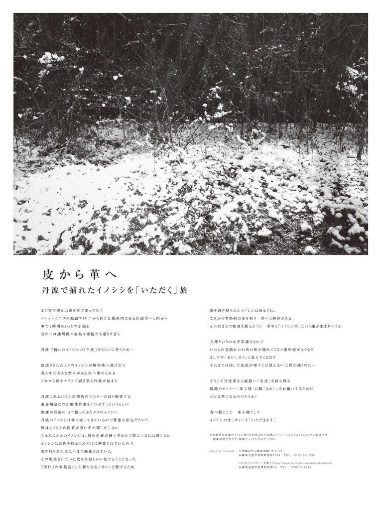Shosa-NP06-4