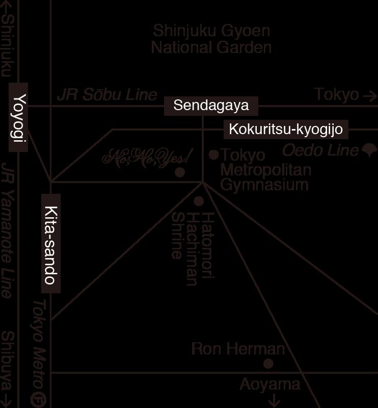 nnyt-map